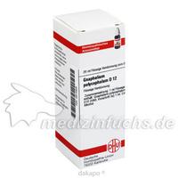 GNAPHALIUM POLYC D12, 20 ML, Dhu-Arzneimittel GmbH & Co. KG