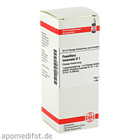 PASSIFLORA INCARNATA D 1, 50 ML, Dhu-Arzneimittel GmbH & Co. KG
