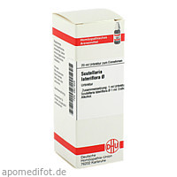 SCUTELLARIA LAT URT, 20 ML, Dhu-Arzneimittel GmbH & Co. KG