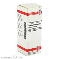 SPARTIUM SCOPARIUM D 1, 20 ML, Dhu-Arzneimittel GmbH & Co. KG