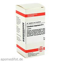 CALADIUM SEGUIN D 4, 80 ST, Dhu-Arzneimittel GmbH & Co. KG