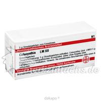 LM COLOCYNTHIS XII, 5 G, Dhu-Arzneimittel GmbH & Co. KG