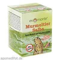 Murmeltiersalbe ohne Paraffine, 100 ML, Apofit Arzneimittelvertrieb GmbH