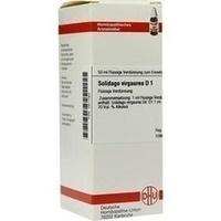 SOLIDAGO VIRGA D 1, 50 ML, Dhu-Arzneimittel GmbH & Co. KG