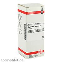 EQUISETUM ARV URT, 50 ML, Dhu-Arzneimittel GmbH & Co. KG