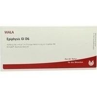EPIPHYSIS GL D 6, 10X1 ML, Wala Heilmittel GmbH