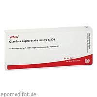 GLANDULA SUPRAR DEX GL D 4, 10X1 ML, Wala Heilmittel GmbH