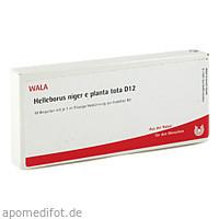 HELLEBORUS NIG E PL TO D12, 10X1 ML, Wala Heilmittel GmbH