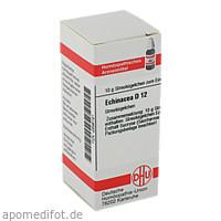Echinacea (HAB) D12, 10 G, Dhu-Arzneimittel GmbH & Co. KG