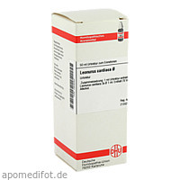 LEONURUS CARDIACA URT, 50 ML, Dhu-Arzneimittel GmbH & Co. KG