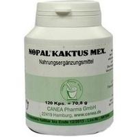 Nopal-Kaktus mex., 120 ST, Pharma-Peter GmbH