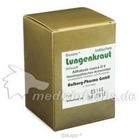 Lungenkraut indisches, 60 ST, Diamant Natuur GmbH
