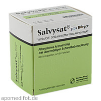 Salvysat plus Bürger 300mg Filmtabletten, 90 ST, Johannes Bürger Ysatfabrik GmbH