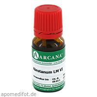 ABROTANUM ARCA LM 6, 10 ML, ARCANA Dr. Sewerin GmbH & Co. KG