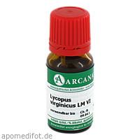 LYCOPUS VIRGIN ARCA LM 6, 10 ML, Arcana Arzneimittel-Herstellung Dr. Sewerin GmbH & Co. KG