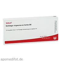 SOLIDAGO VIRGA EX HERB D 6, 10X1 ML, Wala Heilmittel GmbH