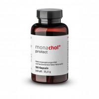 Monachol protect Rotes Reismehl + 30mg Coenzym Q10, 90 ST, Monasan GmbH