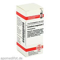 CALADIUM SEGUIN D 4, 10 G, Dhu-Arzneimittel GmbH & Co. KG