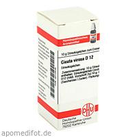 CICUTA VIROSA D12, 10 G, Dhu-Arzneimittel GmbH & Co. KG