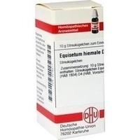 EQUISETUM HIEMALE D 4, 10 G, Dhu-Arzneimittel GmbH & Co. KG