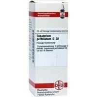 EUPATORIUM PERF D30, 20 ML, Dhu-Arzneimittel GmbH & Co. KG