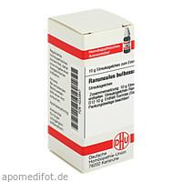 RANUNCULUS BULB D12, 10 G, Dhu-Arzneimittel GmbH & Co. KG