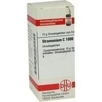 STRAMONIUM C1000, 10 G, Dhu-Arzneimittel GmbH & Co. KG