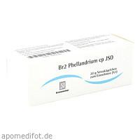 Br2 Phellandrium cp JSO, 20 G, Iso-Arzneimittel GmbH & Co. KG