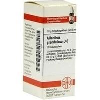 AILANTHUS GLAND D 6, 10 G, Dhu-Arzneimittel GmbH & Co. KG
