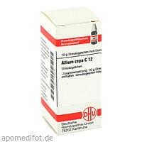ALLIUM CEPA C12, 10 G, Dhu-Arzneimittel GmbH & Co. KG