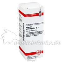 ANGELICA ARCHANGELICA D 2, 20 ML, Dhu-Arzneimittel GmbH & Co. KG