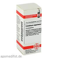 CALADIUM SEGUINUM D12, 10 G, Dhu-Arzneimittel GmbH & Co. KG