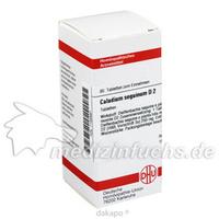 CALADIUM SEGUIN D 2, 80 ST, Dhu-Arzneimittel GmbH & Co. KG