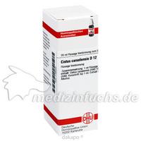 CISTUS CANADENS D12, 20 ML, Dhu-Arzneimittel GmbH & Co. KG