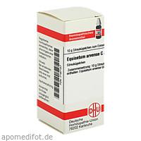 EQUISETUM ARVENSE C30, 10 G, Dhu-Arzneimittel GmbH & Co. KG