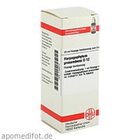 HARPAGOPHYTUM PROC D12, 20 ML, Dhu-Arzneimittel GmbH & Co. KG