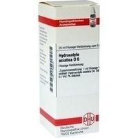 HYDROCOTYLE ASIATICA D 6, 20 ML, Dhu-Arzneimittel GmbH & Co. KG