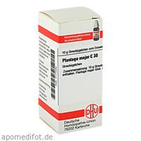 PLANTAGO MAJOR C30, 10 G, Dhu-Arzneimittel GmbH & Co. KG