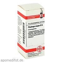 PLANTAGO MAJOR D 6, 10 G, Dhu-Arzneimittel GmbH & Co. KG