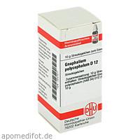 GNAPHALIUM POLYC D12, 10 G, Dhu-Arzneimittel GmbH & Co. KG