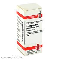 HARPAGOPHYTUM PROCUM C30, 10 G, Dhu-Arzneimittel GmbH & Co. KG
