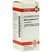 BELLIS PERENNIS C12, 10 G, Dhu-Arzneimittel GmbH & Co. KG