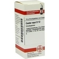 CASTOR EQUI D12, 10 G, Dhu-Arzneimittel GmbH & Co. KG