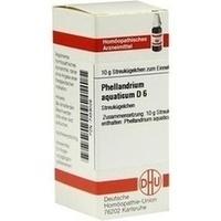 PHELLANDRIUM AQUAT D 6, 10 G, Dhu-Arzneimittel GmbH & Co. KG
