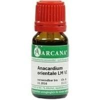 ANACARDIUM ORIENTALE LM 6, 10 ML, ARCANA Dr. Sewerin GmbH & Co. KG