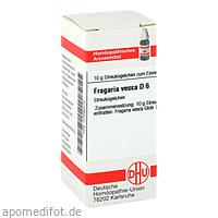 FRAGARIA VESCA D 6, 10 G, Dhu-Arzneimittel GmbH & Co. KG