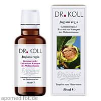 Gemmoextrakt Walnussbaum, 50 ML, Dr. Koll Biopharm GmbH