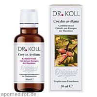 Gemmoextrakt Haselnuss, 50 ML, Dr. Koll Biopharm GmbH