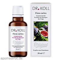 Gemmoextrakt Feige, 50 ML, Dr. Koll Biopharm GmbH