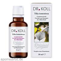 Gemmoextrakt Silberlinde, 50 ML, Dr. Koll Biopharm GmbH